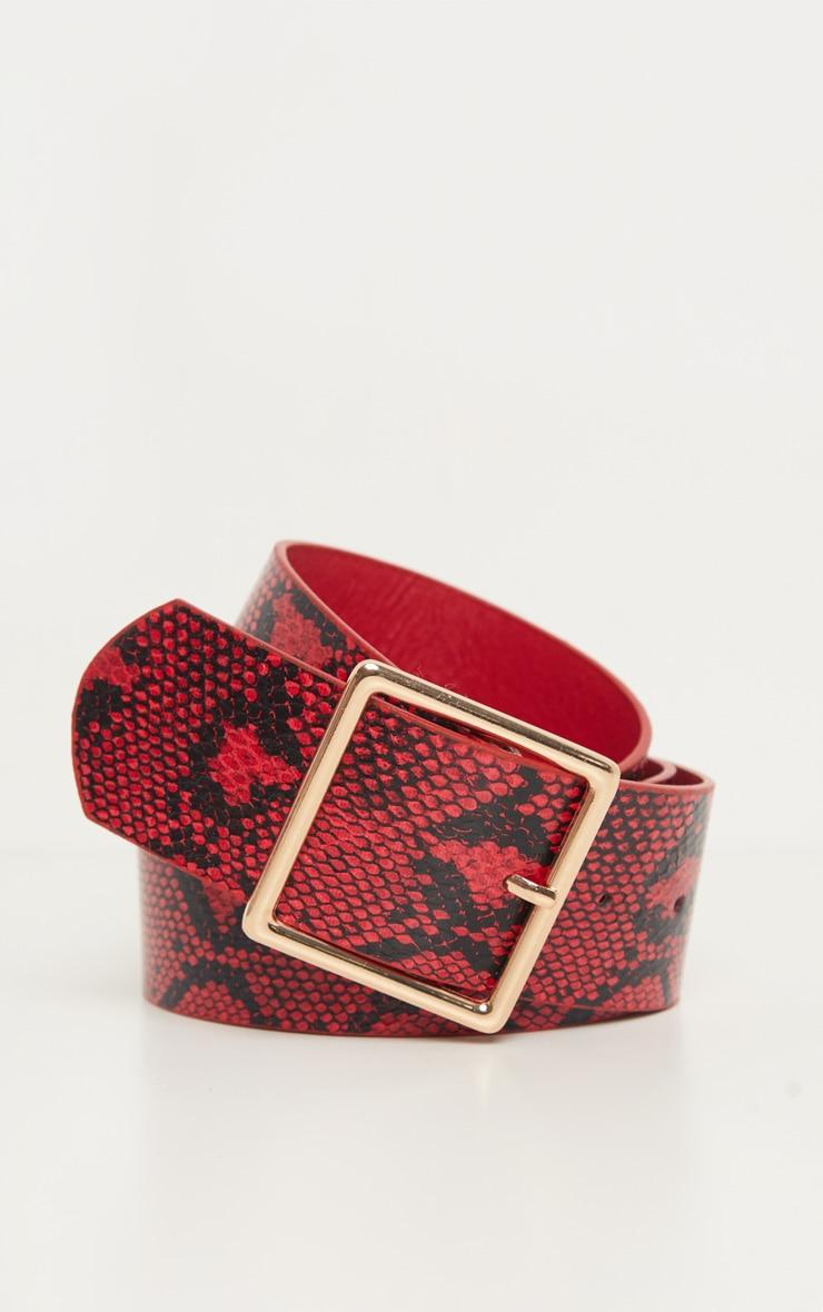 Red Snake Belt 2