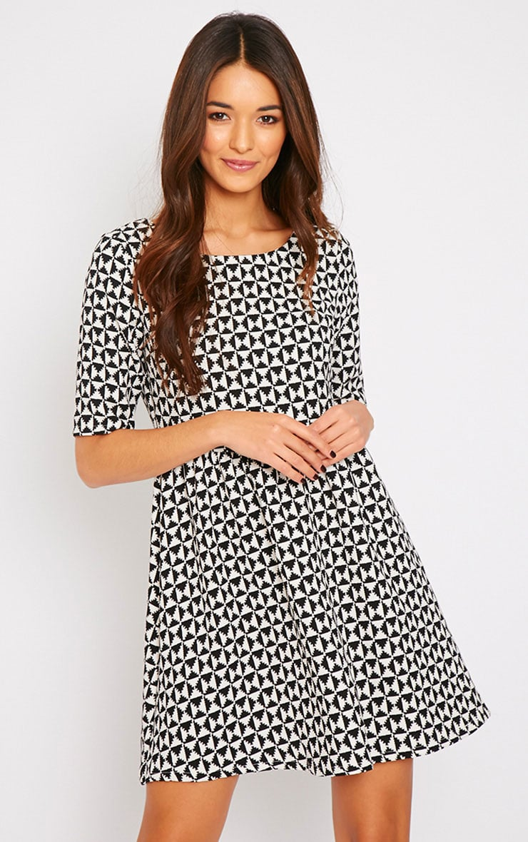 Kelly Monochrome Print Skater Dress 4