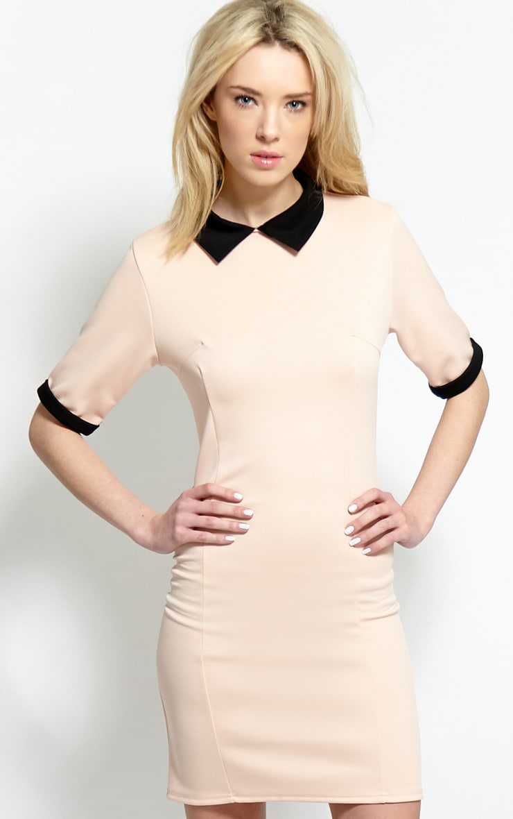Katrina Blush Pink Collar Dress 1