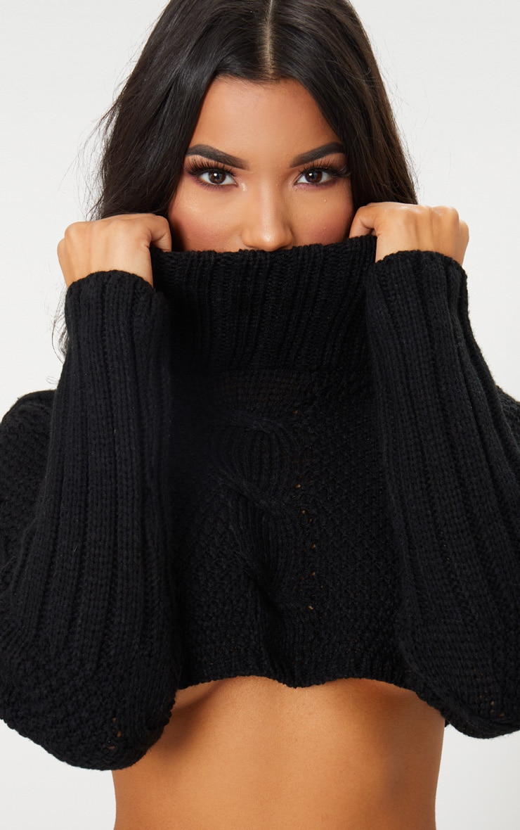 Black Extreme Cropped Roll Neck Jumper 5