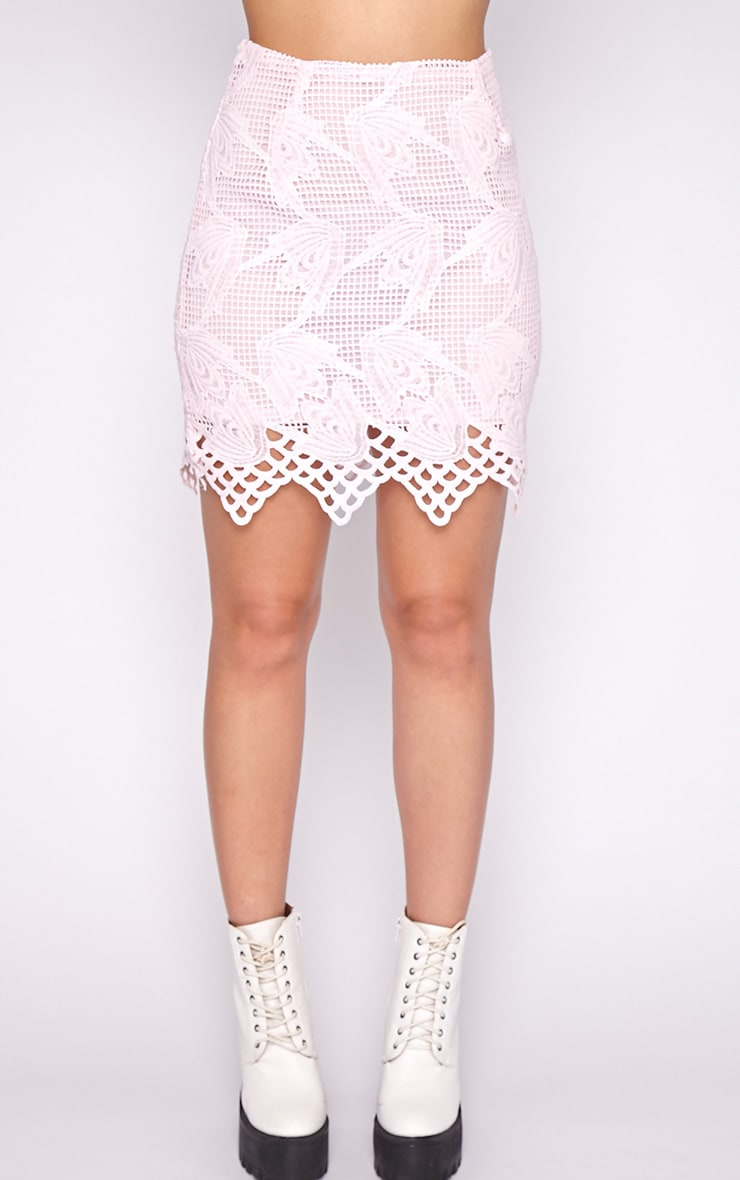 Carla Pink Lace Skirt 2