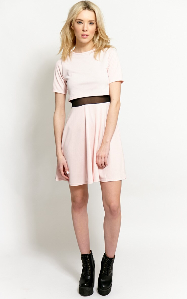 Suzie Pink Mesh Skater Dress 4