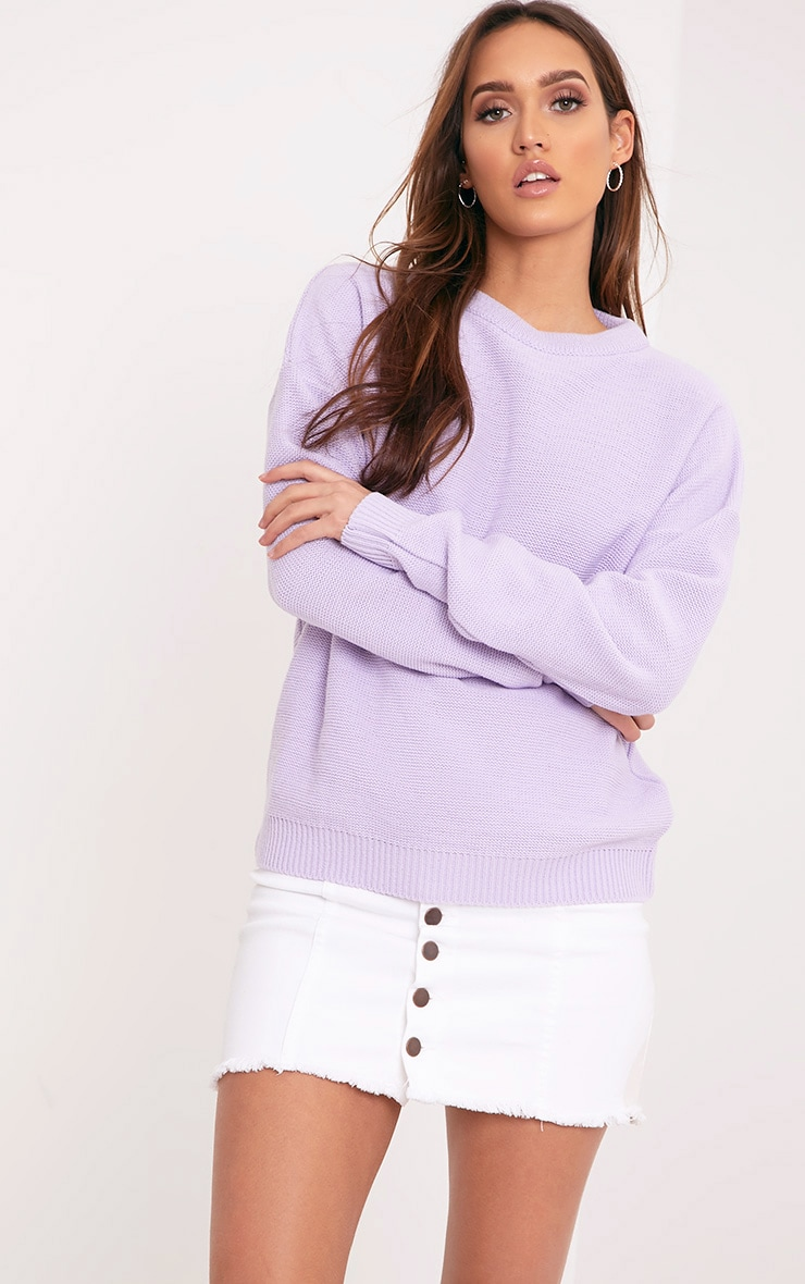 Roberta Lilac Round Neck Knitted Jumper 1