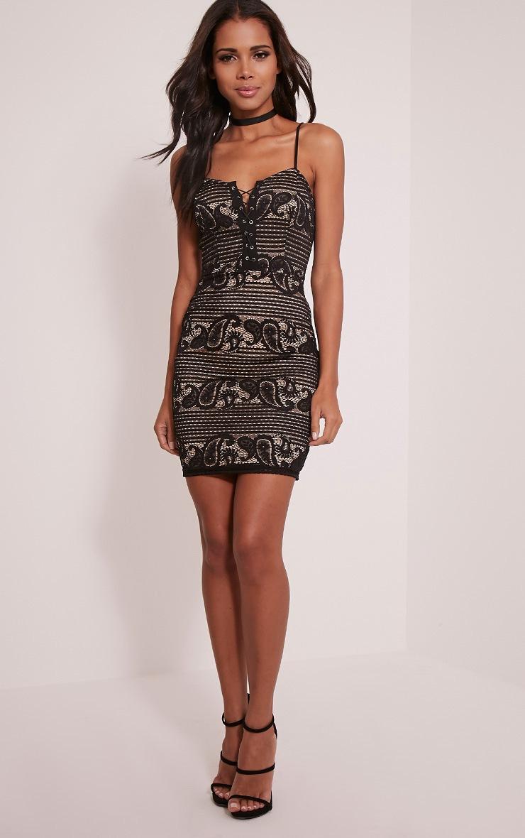 Tayla Black Stripe Lace Bodycon Dress 5