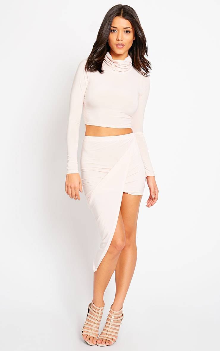 Alba Nude Roll Neck Crop Top 3