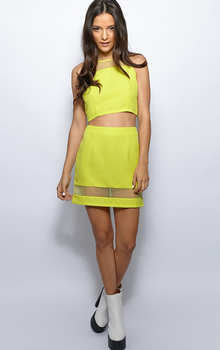 Iva Lime Mesh Panel Crop Top 3