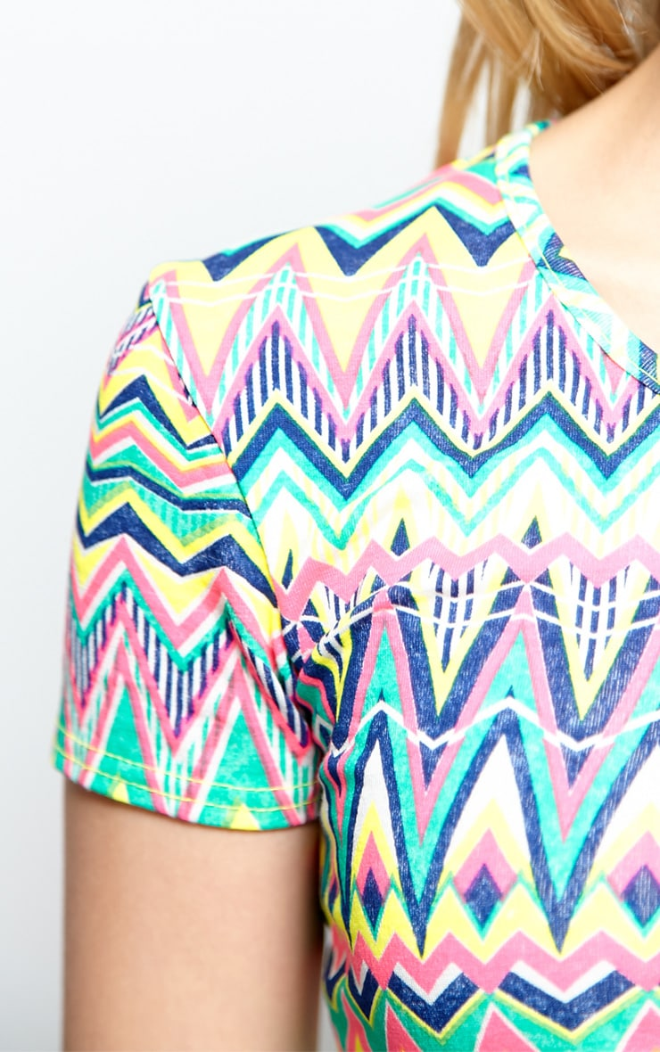 Aztec Print Crop Top  4