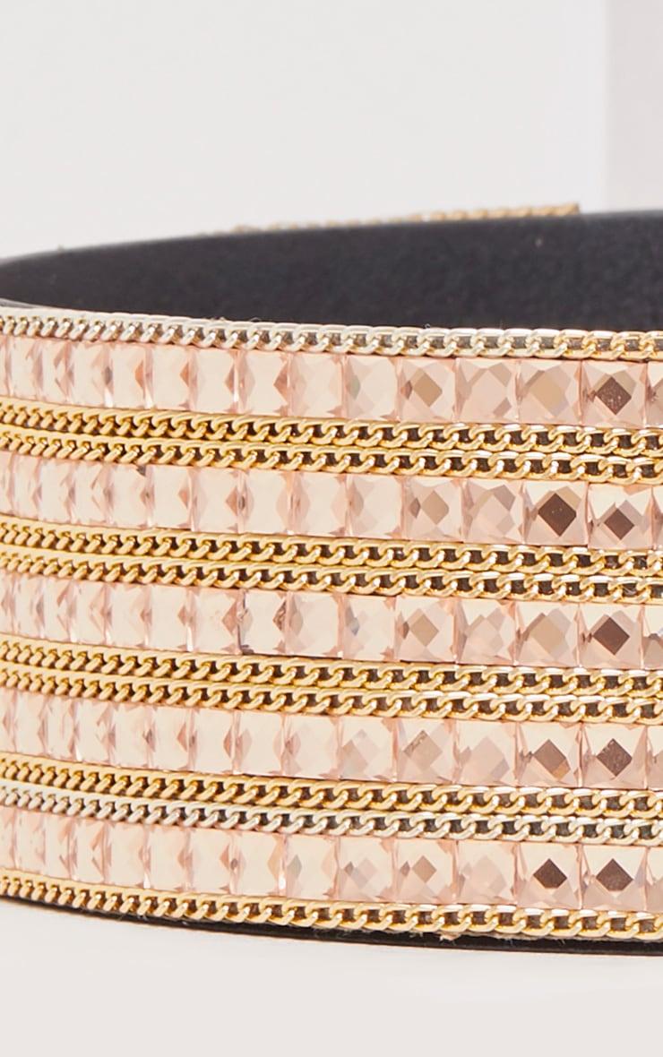 Carmel Rose & Gold Chain Waist Belt 6