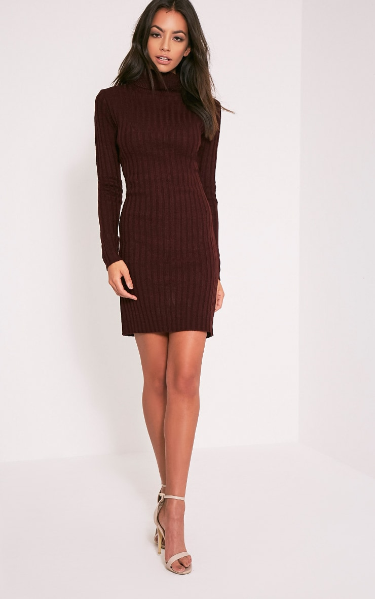 Bianca Berry Ribbed Roll Neck Jumper 5
