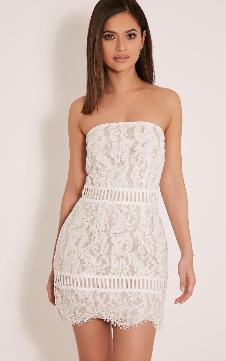 Trishia White Crochet Panel Lace Mini Dress 1