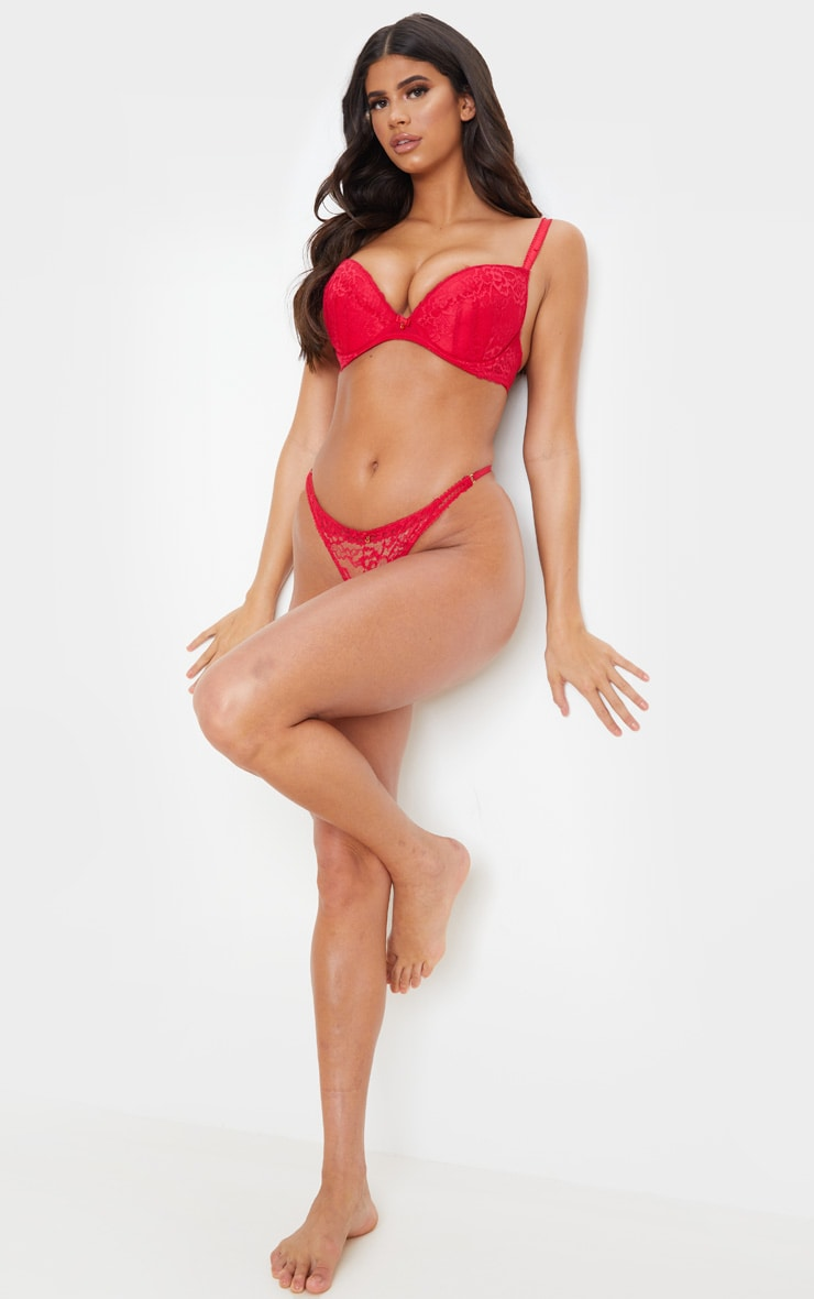 Red Ann Summers DD+ Plunge Sexy Lace Bra 3