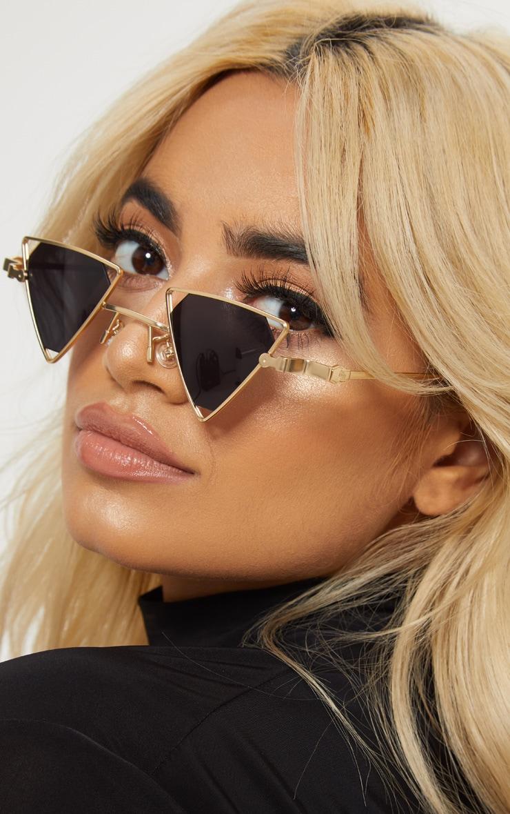 Gold Small Triangle Sunglasses  2