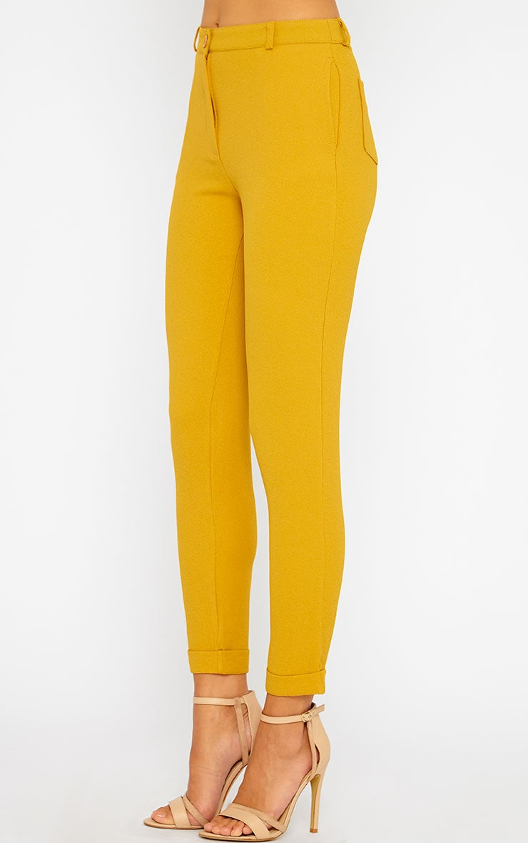 Twiggy Mustard Trousers 3