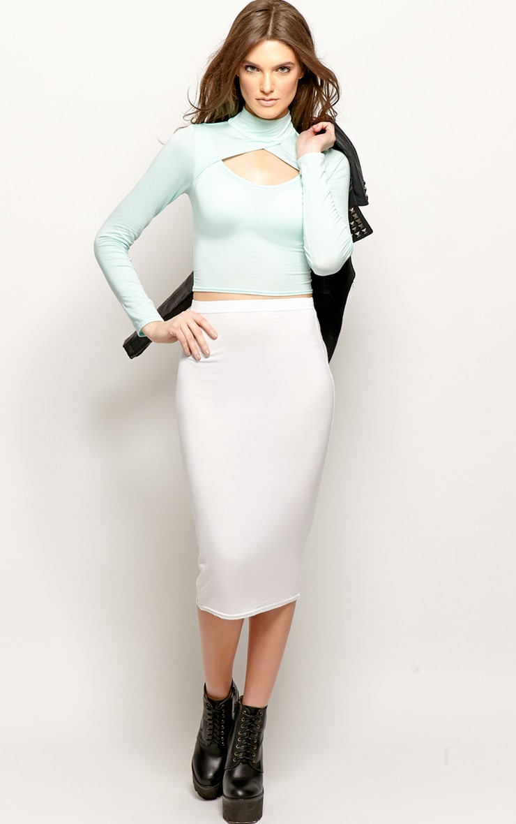 Jenna Mint Roll Neck Cut Out Crop Top  3