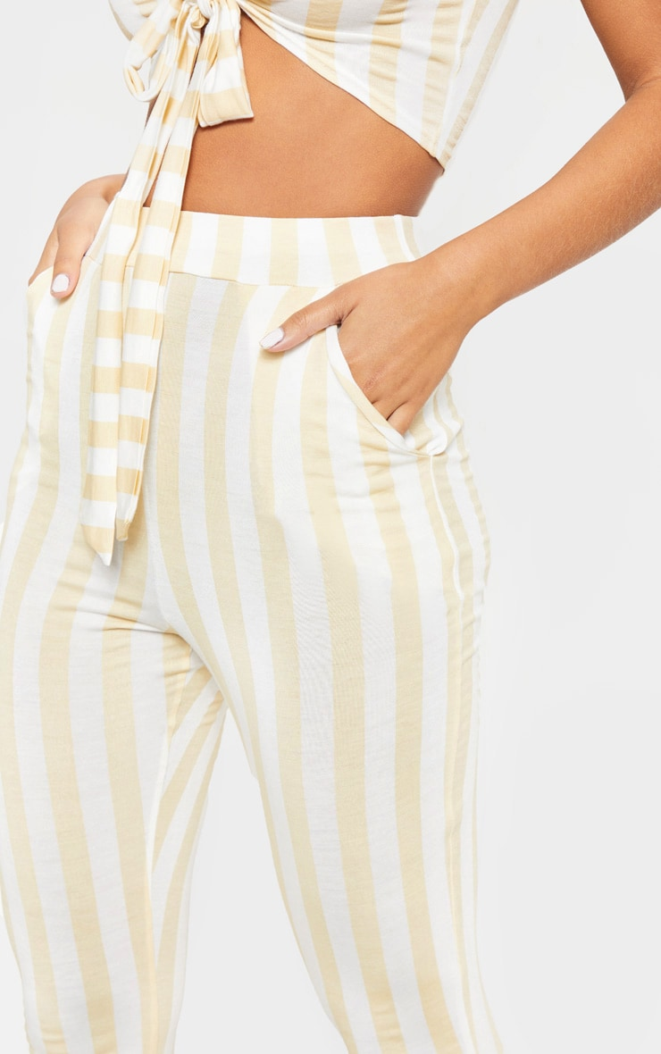 Nude Stripe High Waisted Skinny Trouser 5