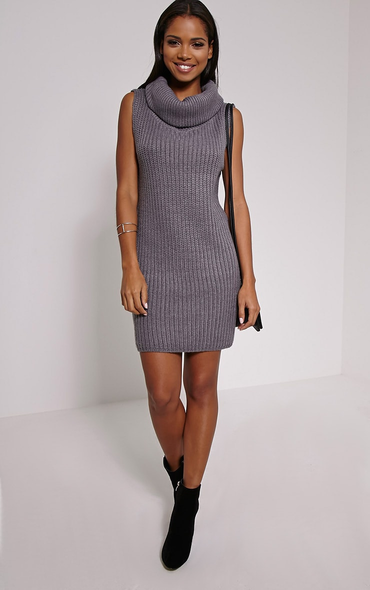 Jossy Grey Knitted Roll Neck Dress 3