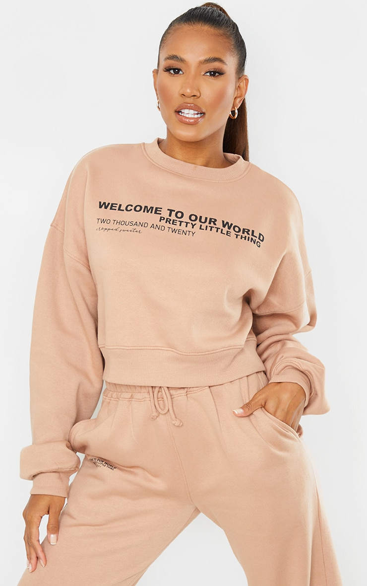 PRETTYLITTLETHING Tan 2020 Slogan Cropped Sweater 2
