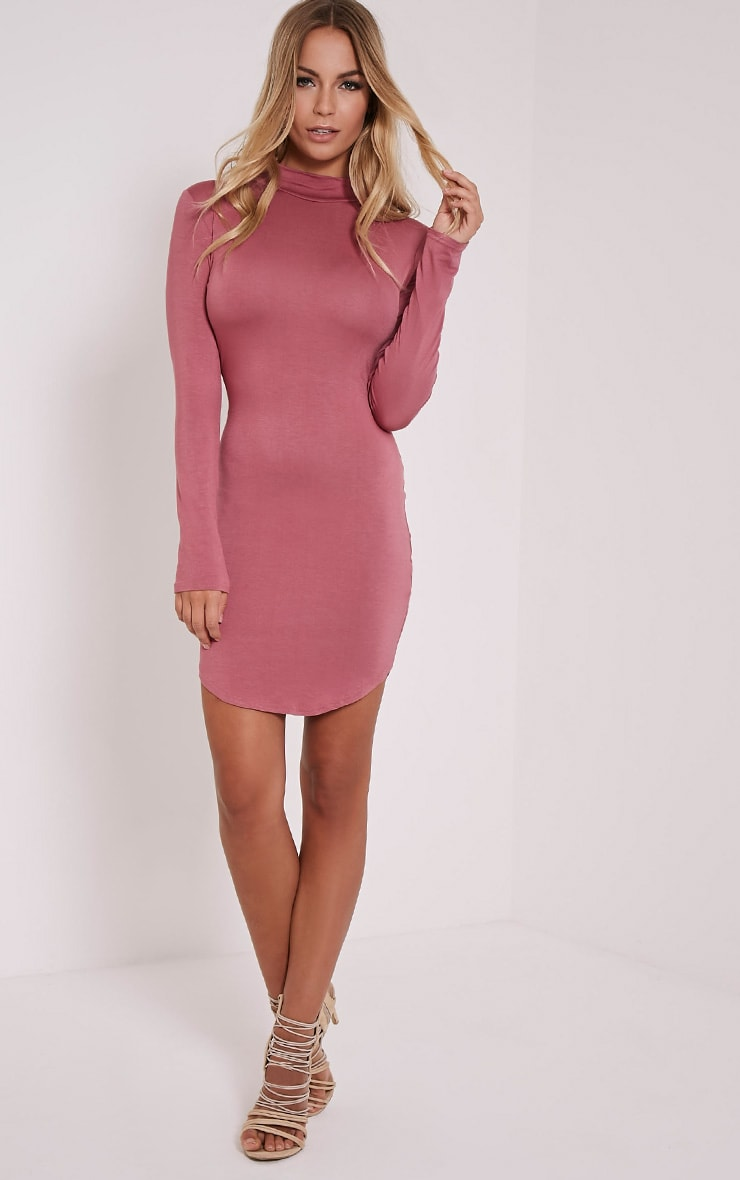 Alby Rose Curve Hem High Neck Dress 1