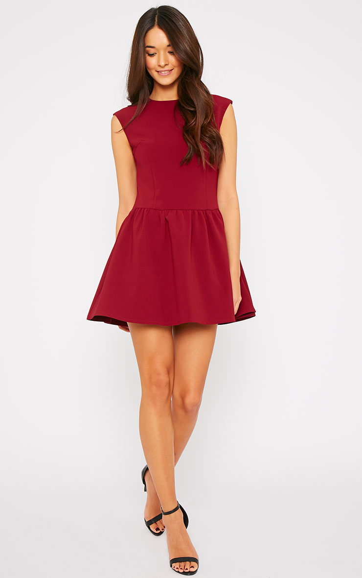 Ria Wine Drop Waist Dress 3