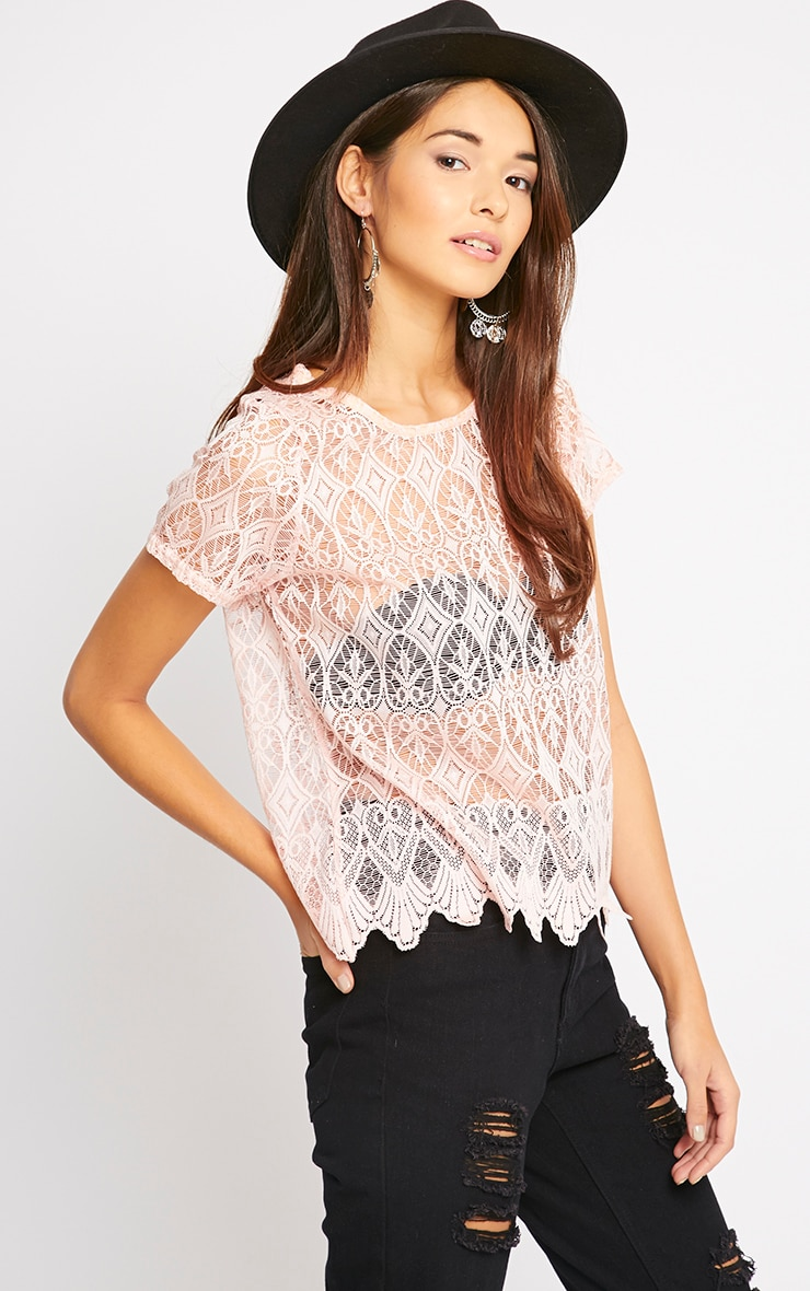 Nina Pink Scallop Trim Lace Top  1
