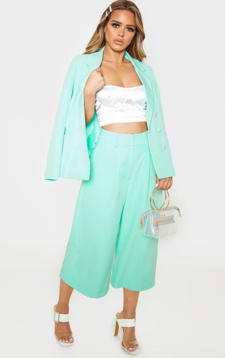 Petite Mint High Waisted Culottes 1