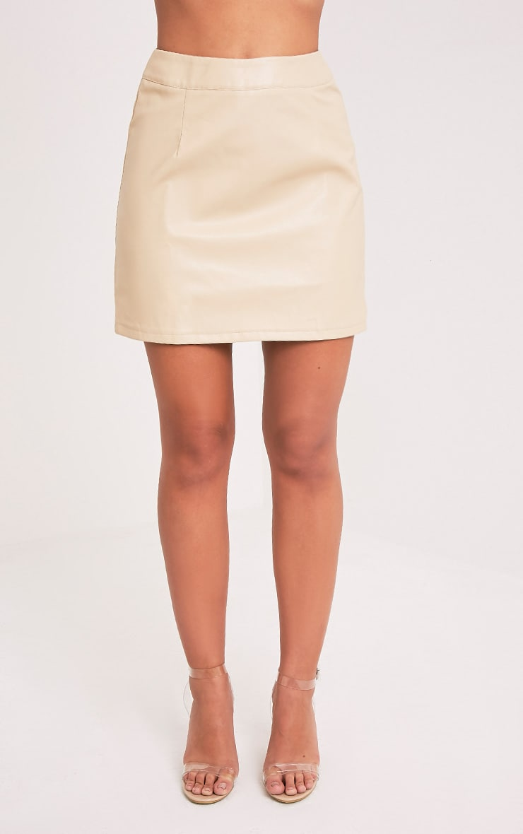 Rose Stone Faux Leather A-Line Mini Skirt 2
