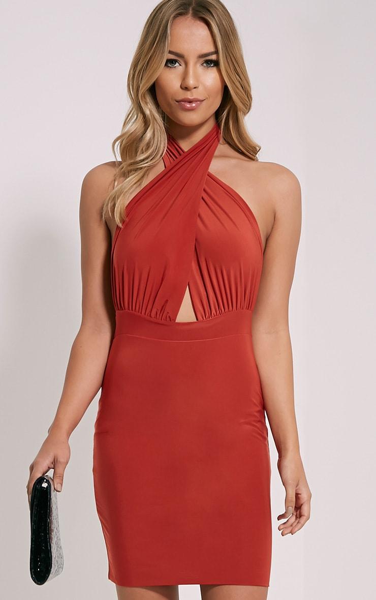 Marisa Rust Cross Front Mini Dress 1