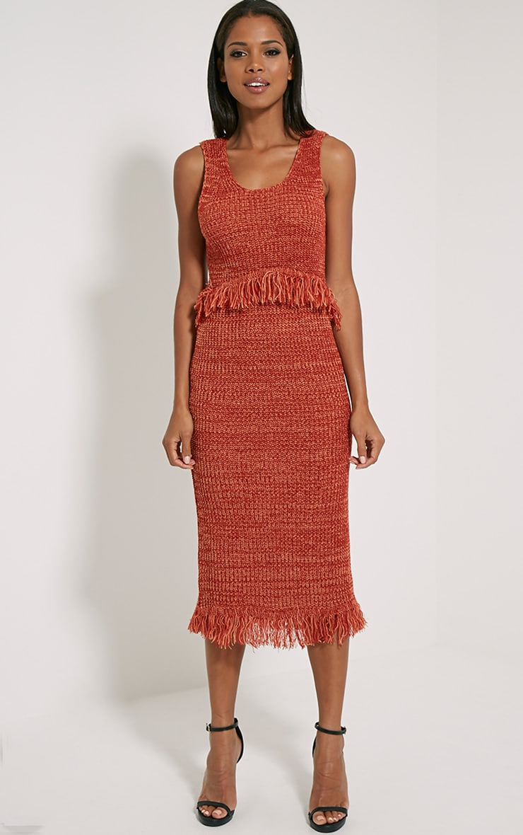 Poesy Rust Knitted Tassel Dress 4