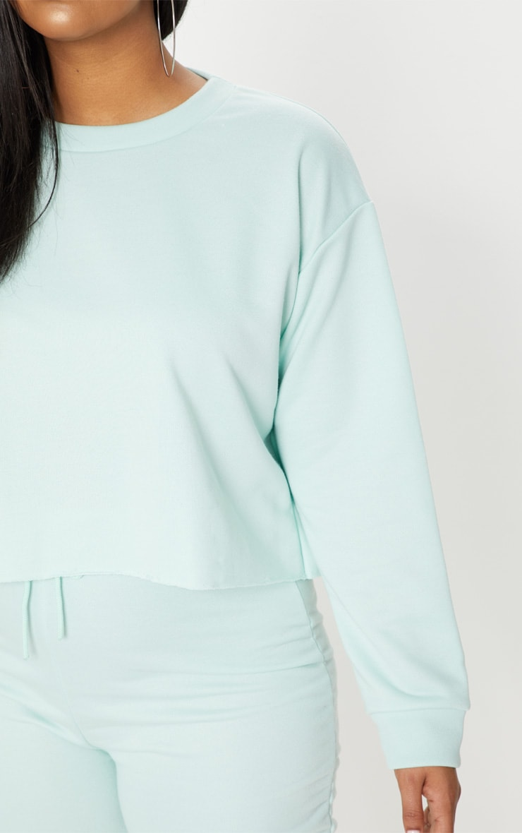 Plus MInt  Extreme Crop Sweater 5