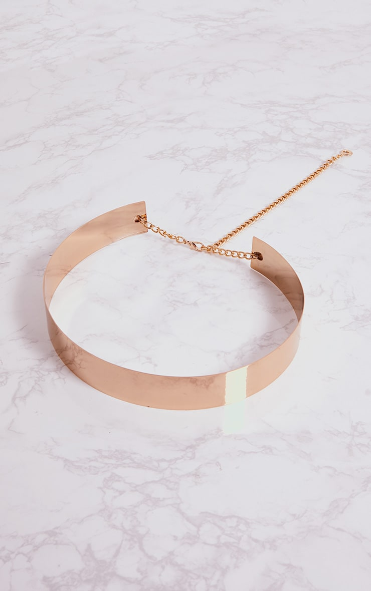 Gold Metal Plated Belt 4