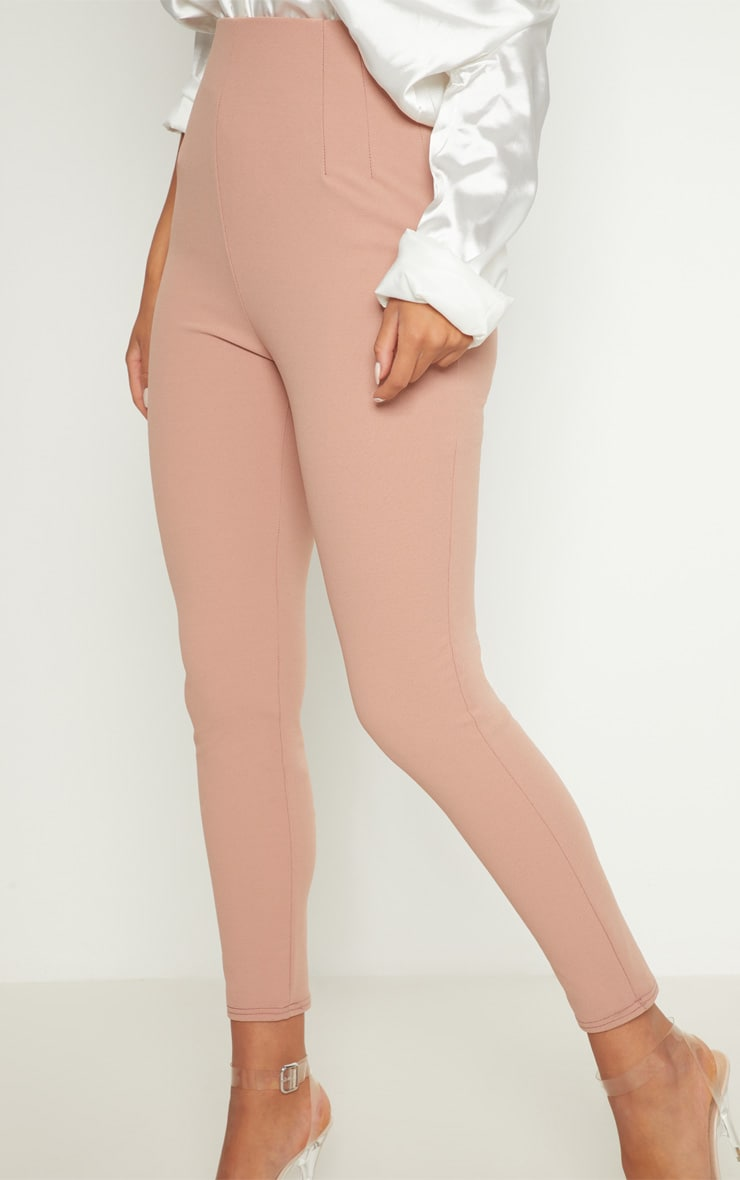 Rose High Waisted Pleated Front Detail Pants 4