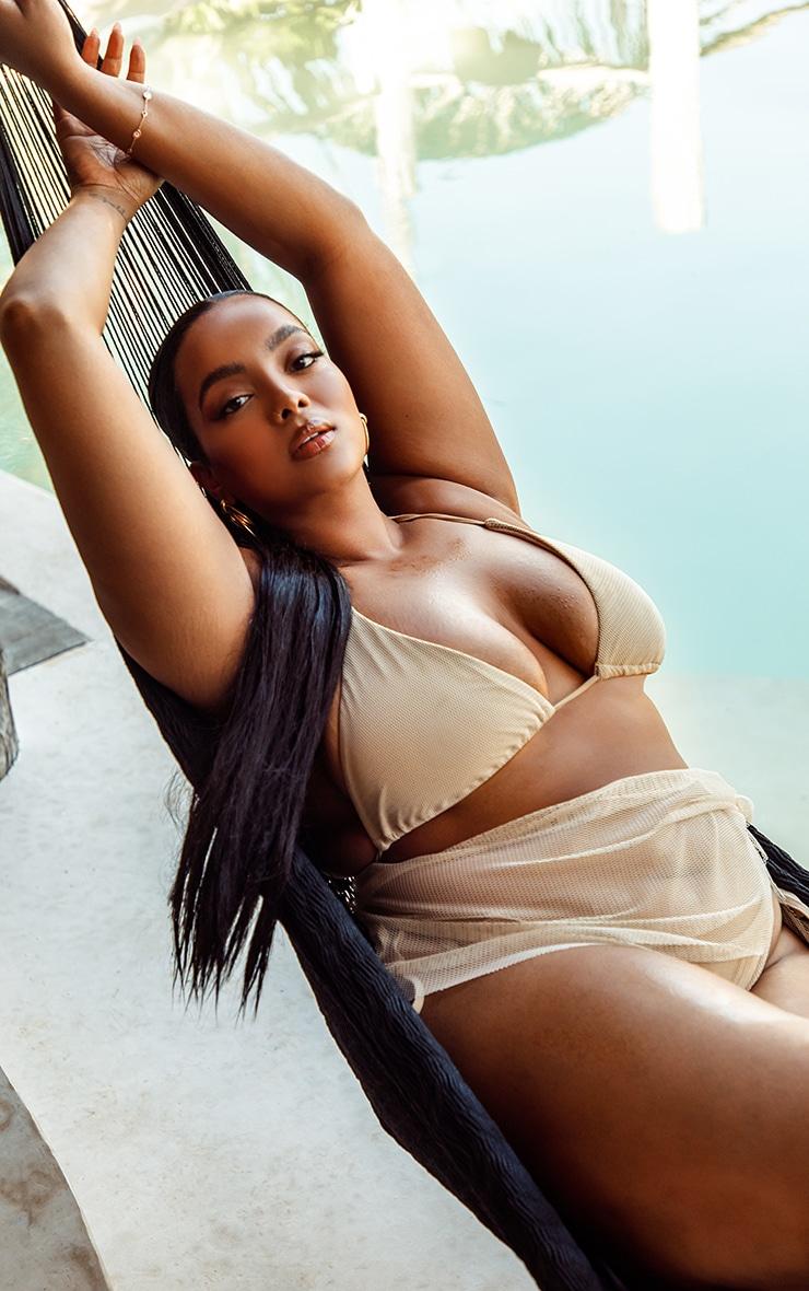 Plus Natural Net Textured Triangle Bikini Top 1
