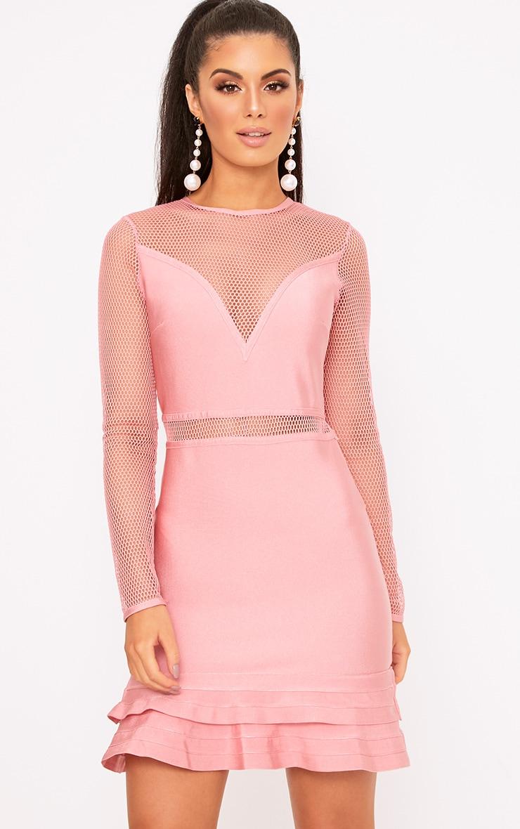 Rose Fishnet Frill Hem Bandage Bodycon Dress 1