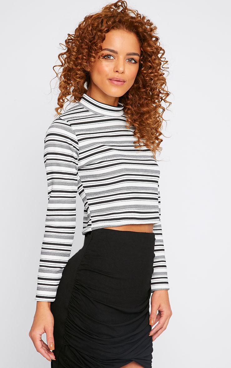 Leah Monochrome Stripe High Neck Crop Top 4