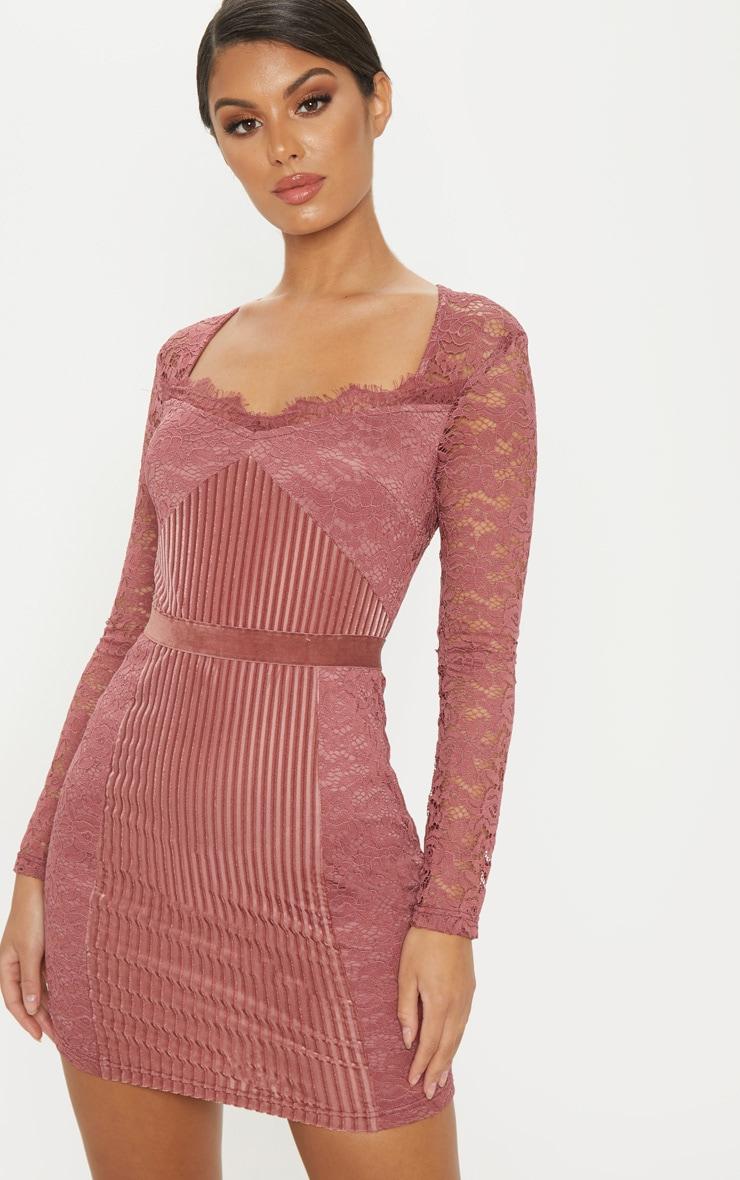 Rose Lace Velvet Insert Bodycon Dress 4