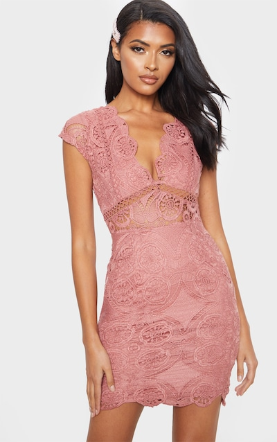 b29a6794ee0 Rose Lace Bodycon Cap Sleeve Dress
