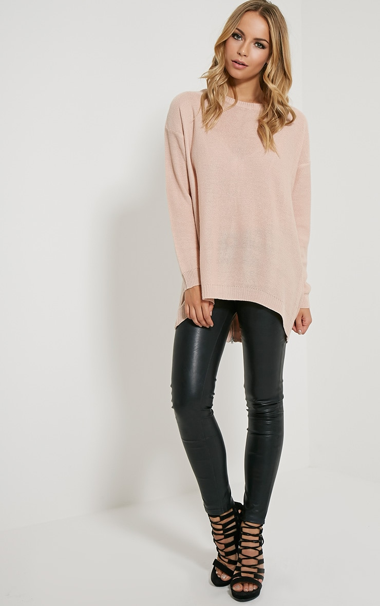 Amia Pink Zip Back Jumper 3