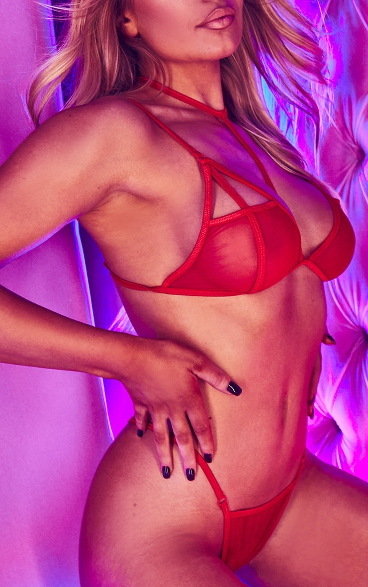 Red Cut Out Choker Strap Mesh Lingerie Set 4