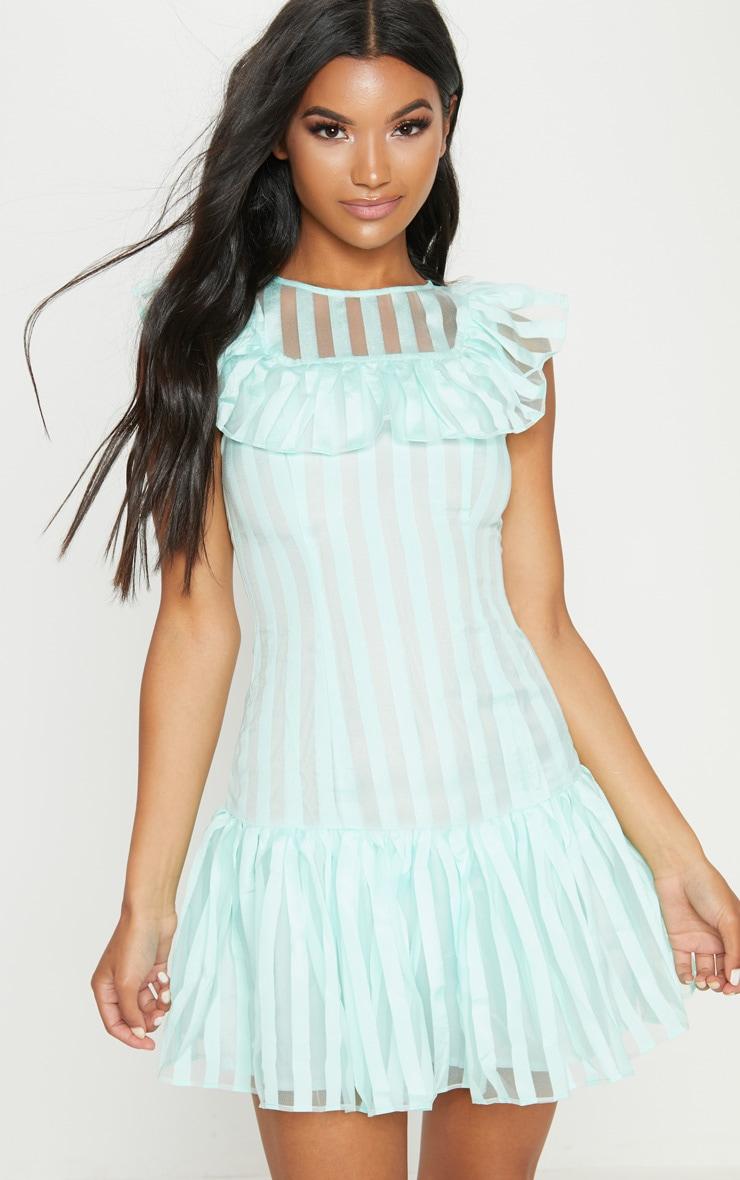 Mint Striped Mesh Frill Hem Bodycon Dress 1
