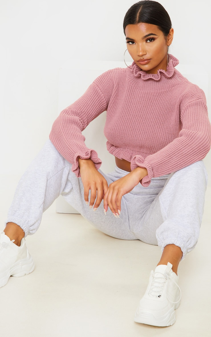 Rose Knit High Neck Ruffle Trim Crop Jumper 4