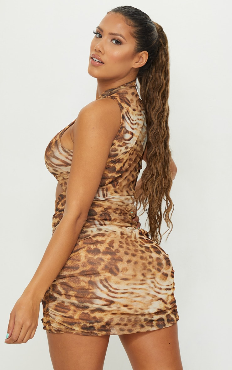 Shape Brown Animal Print Mesh Ruched Side Bodycon Dress 2