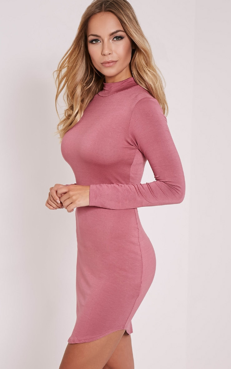 Petite Alby Rose Curve Hem Dress 3