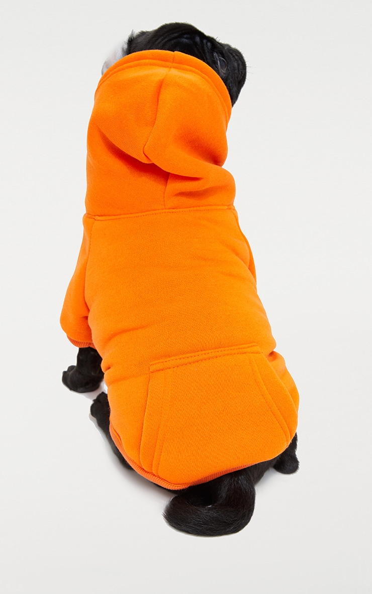 Orange Doggy Hoodie  3