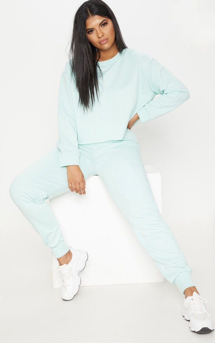 Plus MInt  Extreme Crop Sweater 1