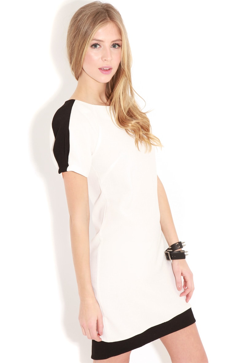 Kenzie Monochrome Shift Dress 1