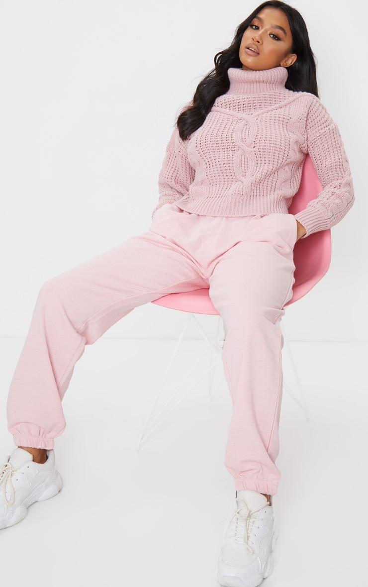 Petite Blush Roll Neck Knitted Long Sleeve Sweater 3
