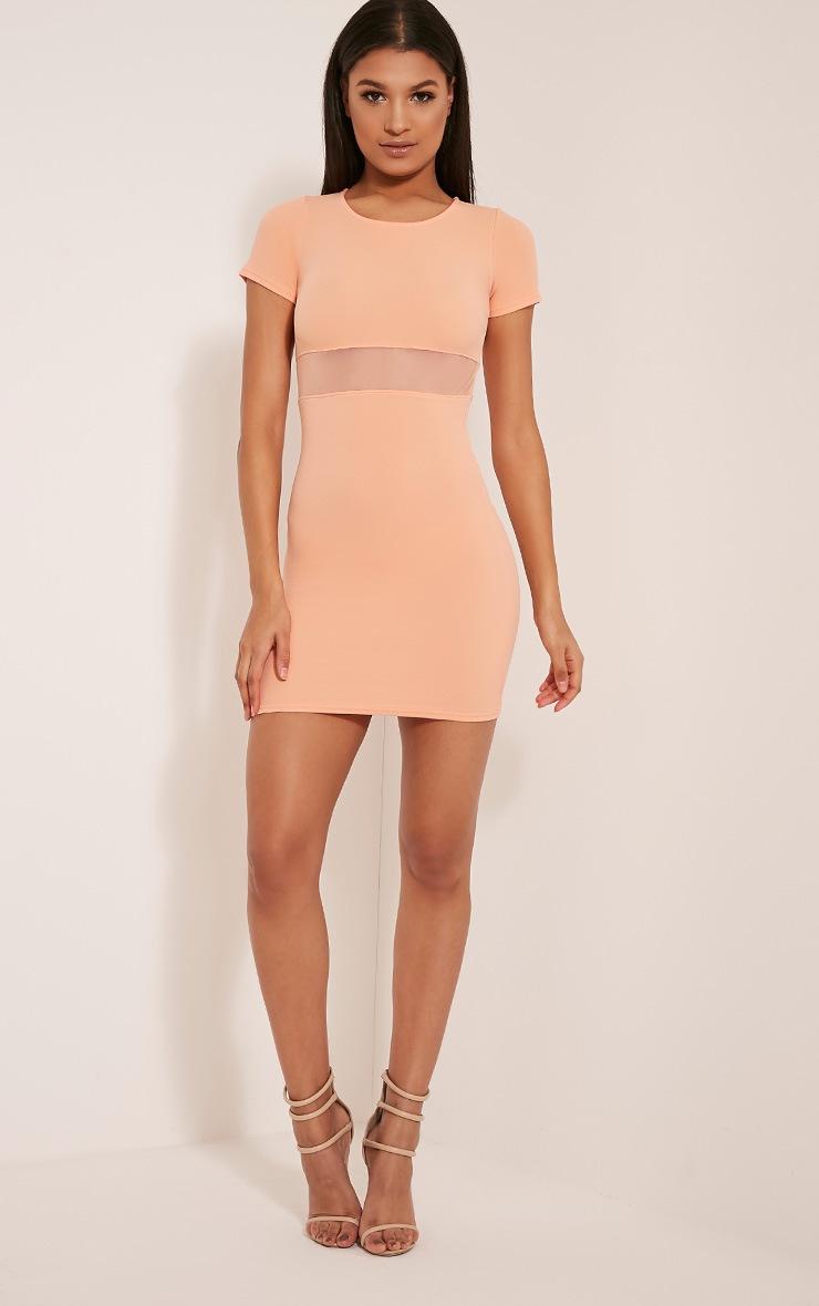 Kaylee Peach Short Sleeve Mesh Panel Bodycon Dress 5