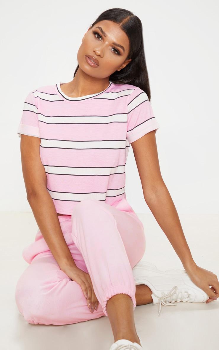 Basic Pink Stripe Roll Sleeve Crop T Shirt  1
