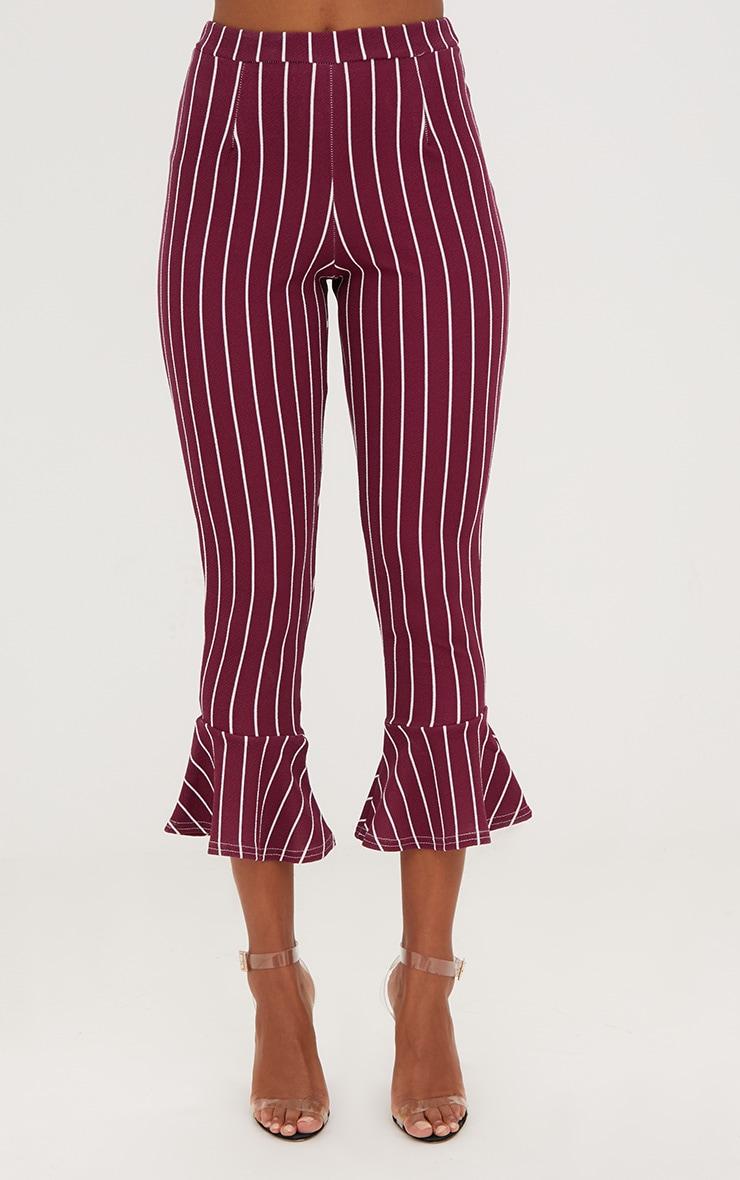 Burgundy Pinstripe Flare Hem Trousers 2