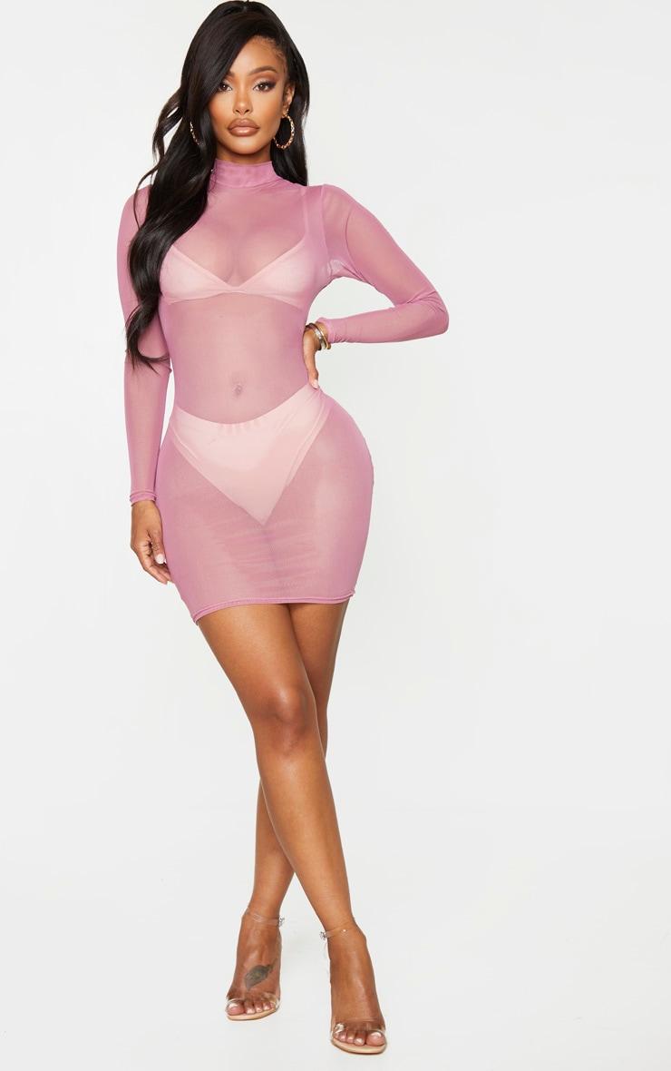 Shape Mauve Sheer Mesh High Neck Bodycon Dress 3